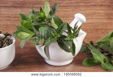 Fresh Natural Green And Dried Mint With White Mortar, Healthy Lifestyle Concept