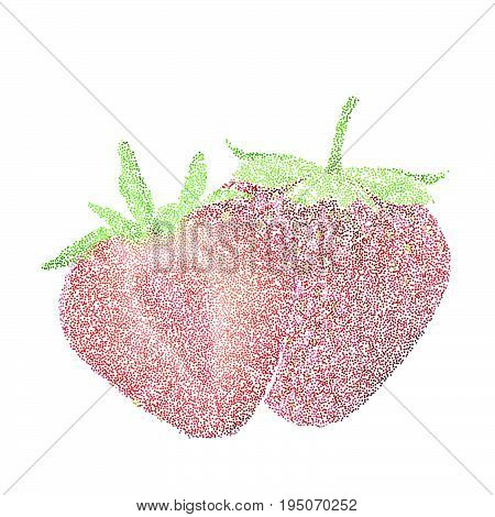 Tropical Nature Fresh Colorful Stippling Fruit Isolated Vector Strawberry