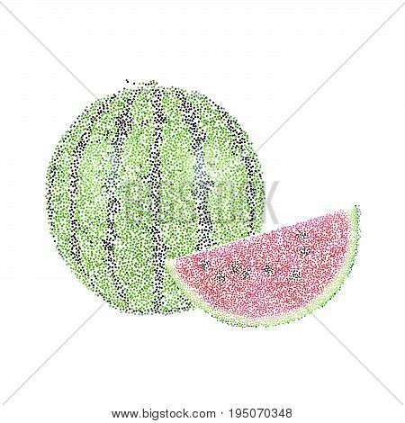 Tropical Nature Fresh Colorful Stippling Fruit Isolated Vector Water Melon