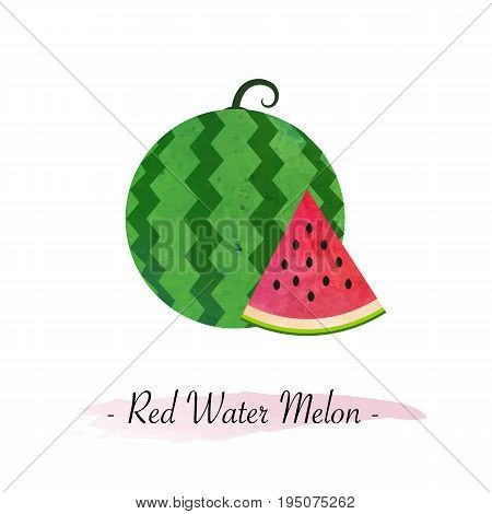 Colorful Watercolor Texture Vector Healthy Fruit Red Water Melon