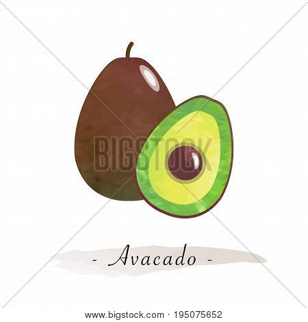 Colorful Watercolor Texture Vector Healthy Fruit Avacado