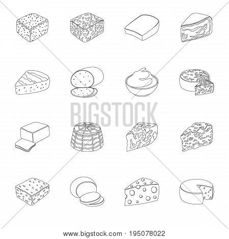 Different types of cheese. Different types of cheese set collection icons in line style vector symbol stock illustration.