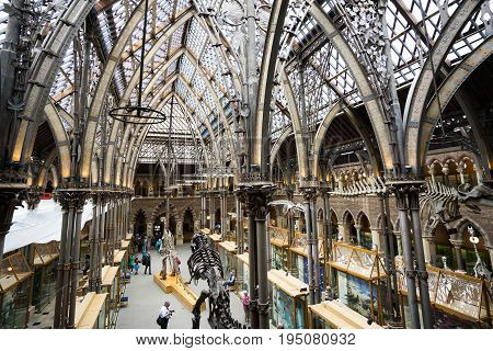 Oxford natural history museum,interior , June 27, 2017