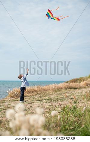 Little boy holding a kite floating in the air against the sea