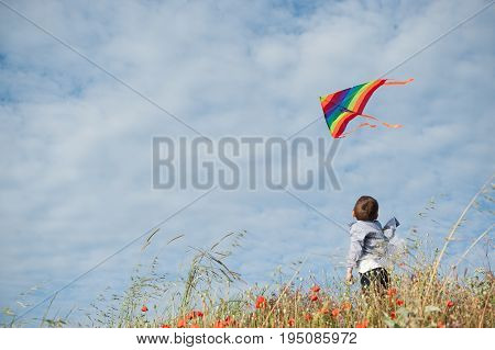 little boy standing in the field holds a flying kite flying in the air against the beautiful sky