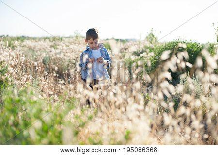 Pensive little boy wearing shirt standing in field amongst plants