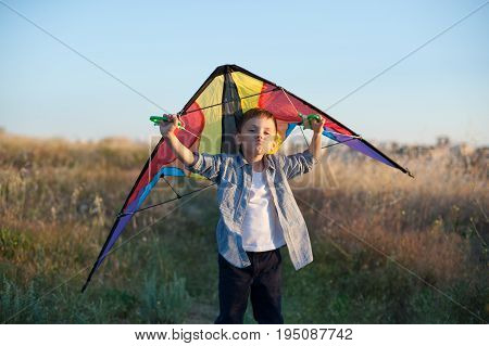 Grimacing boy holding a kite behind his shoulders on field background