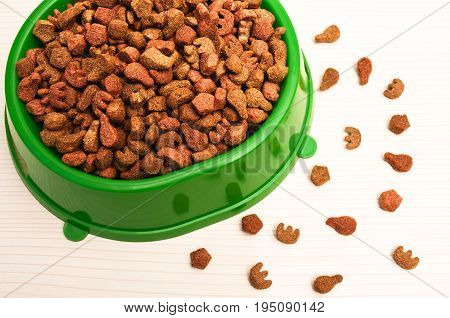 delicious dry food for cats in plastic bowl