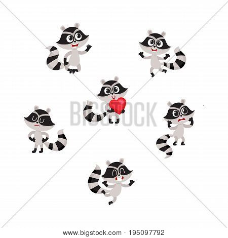 Set of cute raccoon character in different poses and positions, cartoon vector illustration isolated on white background. Funny little raccoon character showing different emotions