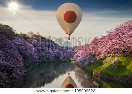 Japan pattern hot air balloon fly on the sky with sakura flower and tokyo city Japan