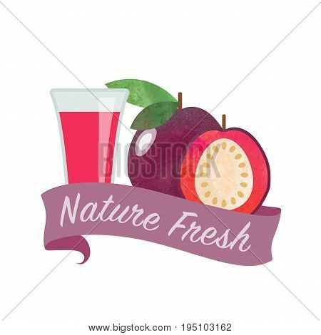 Colorful Watercolor Texture Vector Nature Organic Fresh Fruit Juice Banner Strawberry Guava