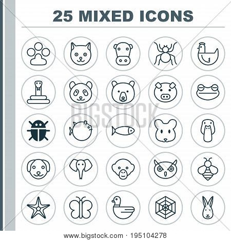 Zoology Icons Set. Collection Of Serpent, Bunny, Kine And Other Elements. Also Includes Symbols Such As Bumblebee, Beetle, Pussy.