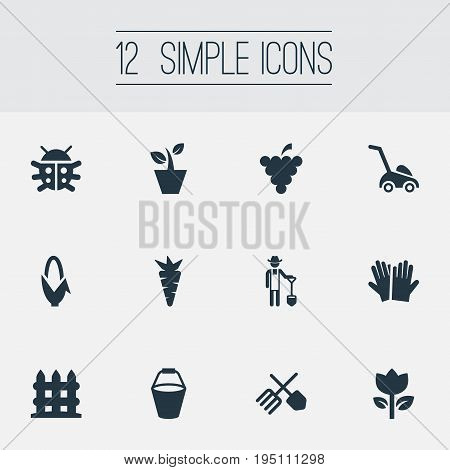 Vector Illustration Set Of Simple Horticulture Icons. Elements Parapet, Horticultural Gauntlet, Root And Other Synonyms Horticulture, Gardening And Plant.
