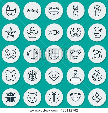 Zoology Icons Set. Collection Of Cobweb, Fish, Seafood Skeleton And Other Elements. Also Includes Symbols Such As Web, Animal, Reindeer.