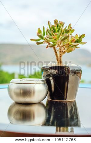 Green crassula in a ceramic pot and a silvery metallic ashtray on a round table against a blue sky and sea landscape. Back background blurred