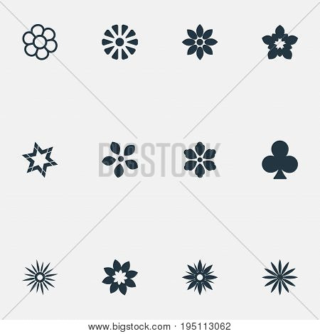Vector Illustration Set Of Simple  Icons. Elements Florist, Lucky Leaf, Stephanotis And Other Synonyms Blossom, Windflower And Lucky.