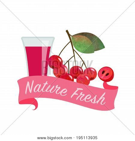 Colorful Watercolor Texture Vector Nature Organic Fresh Fruit Juice Banner Red Chokeberry Aronia Ber