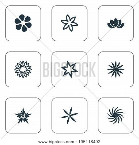 Vector Illustration Set Of Simple Blossom Icons. Elements Sunflower, Daisy, Narcissus And Other Synonyms Delphinium, Flower And Helianthus.