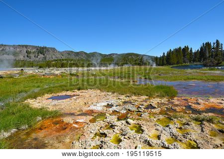 Hot spring in the Biscuit Basin of Yellowstone National Park.