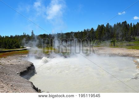 Churning Cauldron in the Mud Volcano area of Yellowstone National Park. It tosses muddy water three to five feet high.