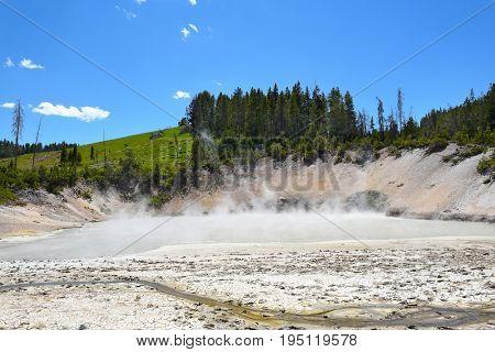Mud Geyser in Yellowstone National Park.