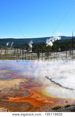 Firehole Spring in the Lower Geyser Basin of Yellowstone National Park.