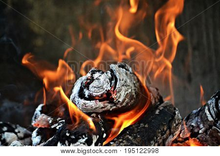 Warm fire light, closeup fire isolated photography