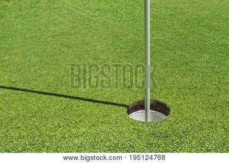Golf hole on the putting green