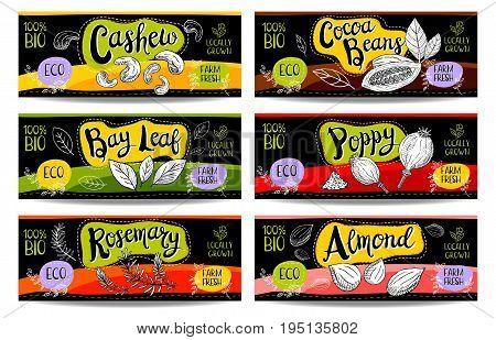 Set of colorful labels, sketch style, food, spices, black, horizontal. Cashew, poppy, cocoa beans, almond, bay leaf, rosemary. Vegetables, farm fresh, locally grown. Hand drawn vector illustration.