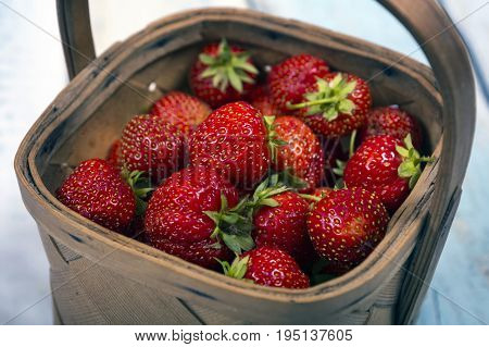 Garden Strawberries in wooden basket isolated on light wooden background