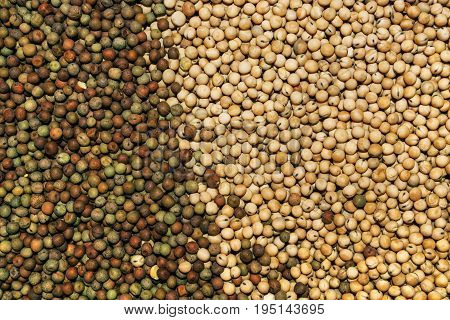 Heap of agricultural crop seed as background top view