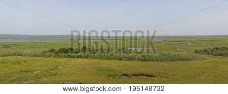 Marsh land along the New Jersey coast near Brigantine, New Jersey