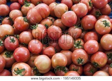 Red tomatoes. Village market organic tomatoes. Fresh tomatoes. Qualitative background from tomatoes