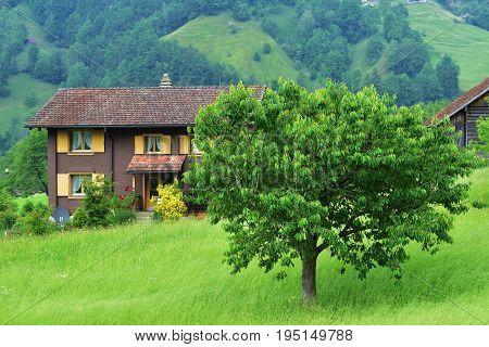 Stunning Alpine Landscape In Canton Uri, Switzerland