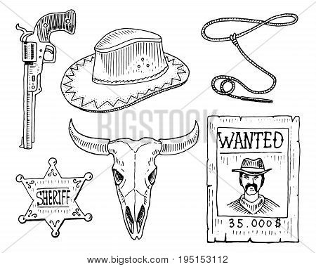 Wild west, rodeo show, cowboy or indians with lasso. hat and gun, cactus with horseshoe, sheriff star and bison, bull skull and wanted poster. engraved hand drawn in old sketch and vintage style