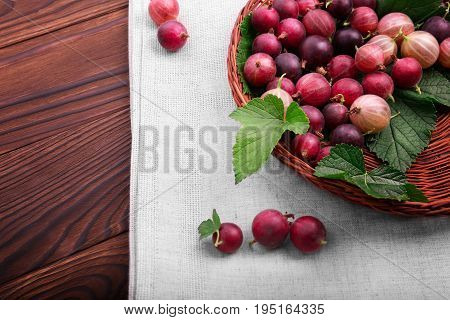 A macro light brown basket full of ripe multi-colored gooseberries . Fresh bright gooseberries on a dark wooden background. Bright raw red gooseberries in a new crate. Sour berries.
