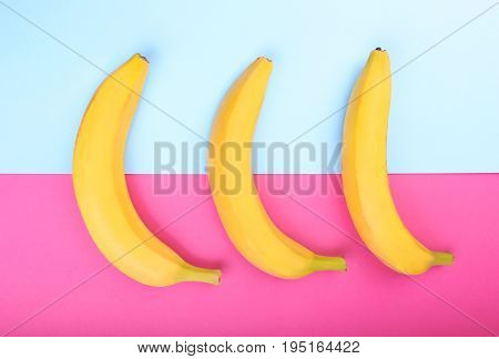 Three fresh and large bright yellow bananas on a beautiful on a bright pink and light blue background. Banana. A group of fresh bananas. Tropical fruits.