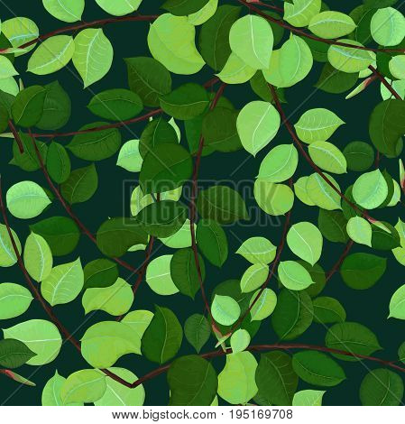 Seamless Pattern of Ficus Leaves on Dark Background. Vector Forest Design