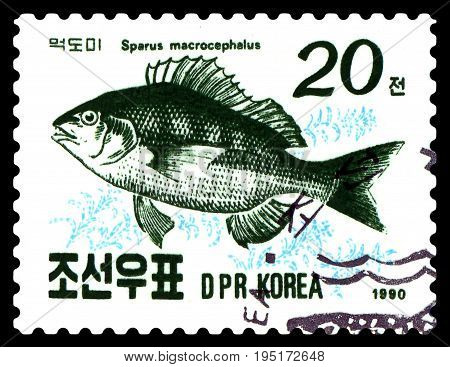 STAVROPOL RUSSIA - July 12 2017: a stamp printed by Sweden shows image fish Blackhead seabream (Sparus macrocephalus) circa 1990
