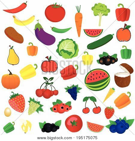 fruit and vegetables illustration in colorful on white