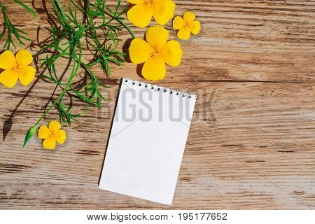 Notepad with white paper, decorate with a sprig of yellow flowers on a plastic surface, imitation wood, top view,mock up