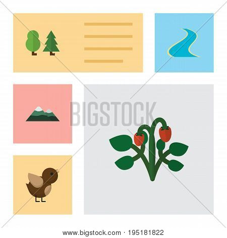 Flat Icon Natural Set Of Peak, Forest, Tributary And Other Vector Objects. Also Includes Strawberry, Peak, Wing Elements.