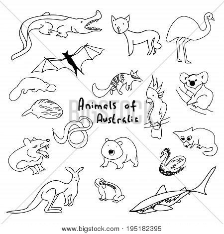 Animals of Australia (a set of simple drawings), cartoon animals, set of vector contours