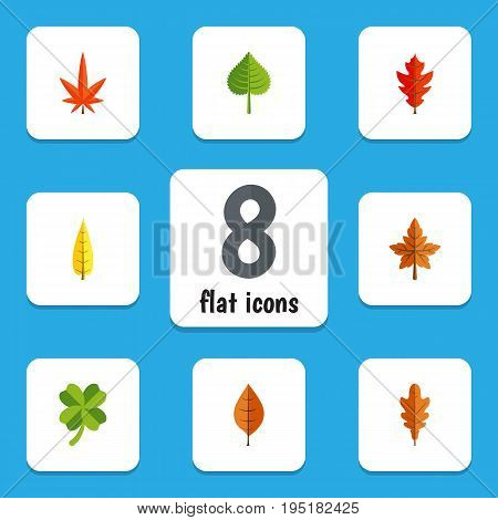 Flat Icon Leaves Set Of Linden, Foliage, Leafage And Other Vector Objects. Also Includes Leafage, Alder, Frond Elements.