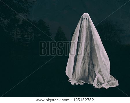 Ghost figure with forest background - Halloween spirit, haunting