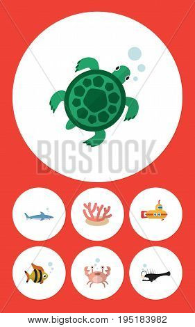 Flat Icon Nature Set Of Cancer, Periscope, Tortoise And Other Vector Objects. Also Includes Coral, Fish, Seafood Elements.