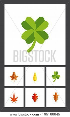 Flat Icon Leaf Set Of Alder, Aspen, Leafage And Other Vector Objects. Also Includes Foliage, Oaken, Leafage Elements.