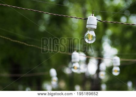 Light bulbs garland outdoor. Blurred greenery in background, place for text from left