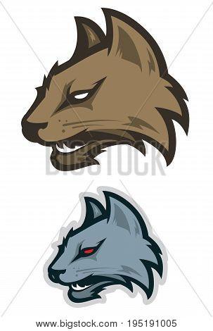 Wildcat sport mascot  for college sport team