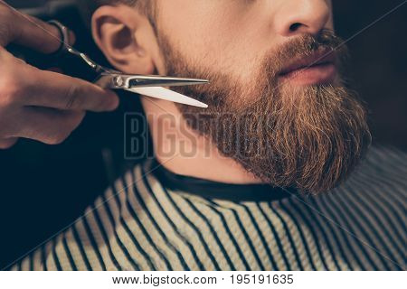 Beard Styling And Cut. Close Up Cropped Photo Of A Styling Of A Red Beard. So Trendy And Stylish! Ad